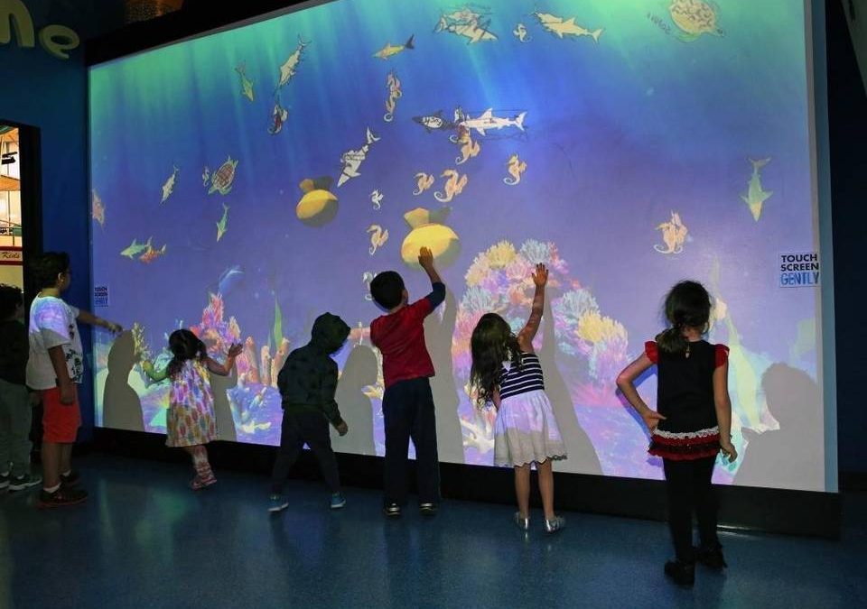 Israël : l'innovation au service de la culture au musée digital Carasso Science Park