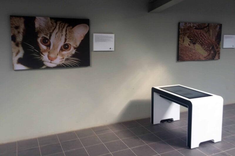 table tactile interactive 32 pouces musée digital